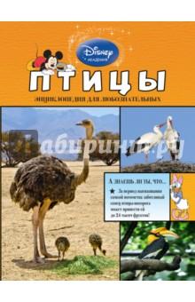 ПтицыЖивотный и растительный мир<br>Герои Disney приглашают маленьких читателей исследовать окружающий мир! В этой книге они узнают всё самое интересное о попугаях, колибри, страусах, пингвинах, сычах и других невероятных птицах. Любимые персонажи расскажут, какие пернатые живут в подземных норках, зачем павлинам яркие хвосты, кто такие птицы-носороги, и о многом другом. Ребят ждут не только любопытнейшие факты, изложенные доступным и увлекательным языком, но и большие красочные иллюстрации! Они снабжены уникальными подписями, разъясняющими особенности и назначение той или иной части тела каждой птицы. А ещё благодаря этой книге маленькие читатели разовьют познавательные способности, кругозор и структурное мышление, а также получат первый опыт работы с энциклопедической литературой.<br>Издание предназначено для детей младшего школьного возраста.<br>
