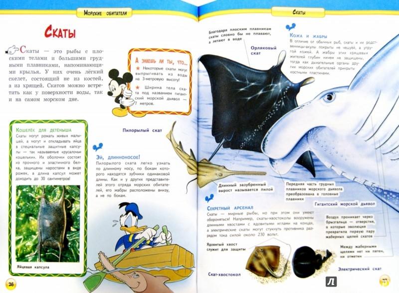 Иллюстрация 1 из 8 для Морские обитатели | Лабиринт - книги. Источник: Лабиринт