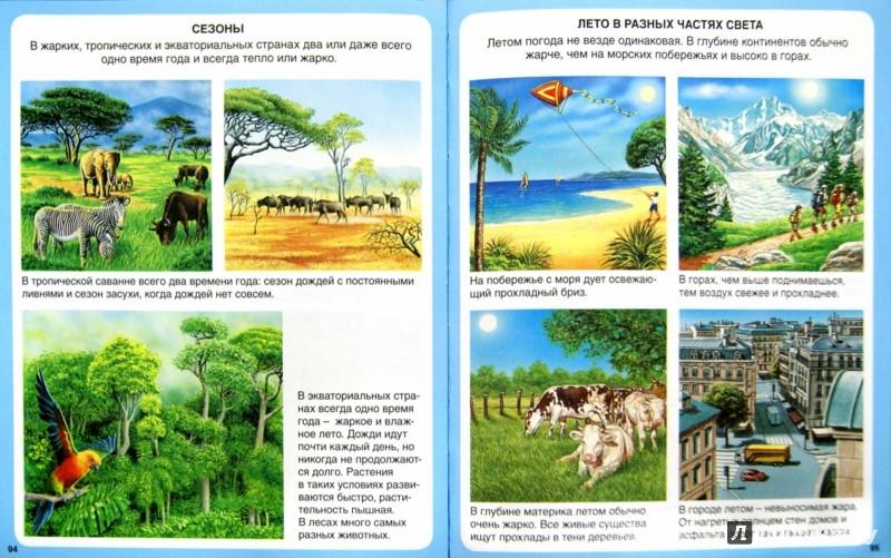 Иллюстрация 1 из 73 для Загадки природы - Бомон, Гийоре | Лабиринт - книги. Источник: Лабиринт