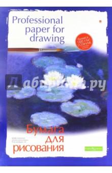 Папка для рисования 8 листов, А2 (4-018) Альт