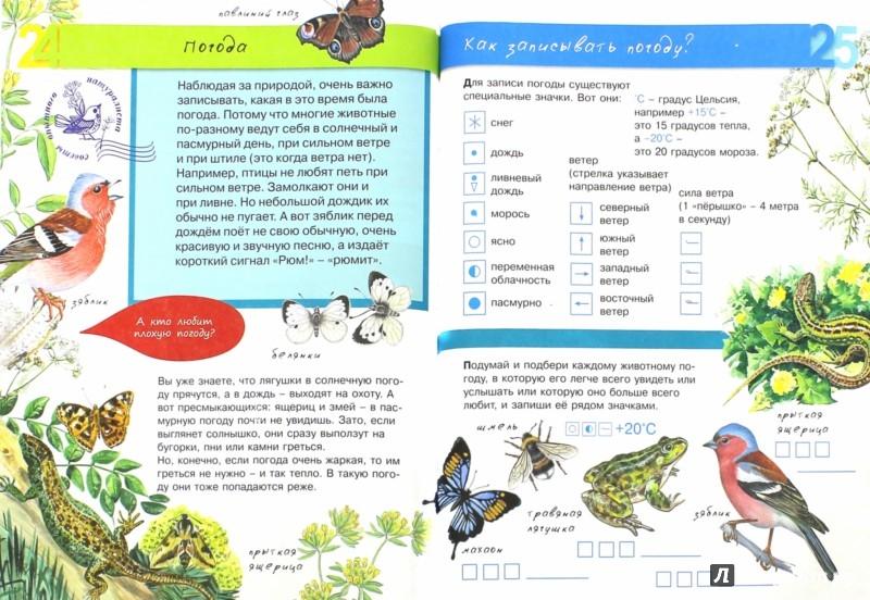 Иллюстрация 1 из 24 для Животные - Петр Волцит | Лабиринт - книги. Источник: Лабиринт