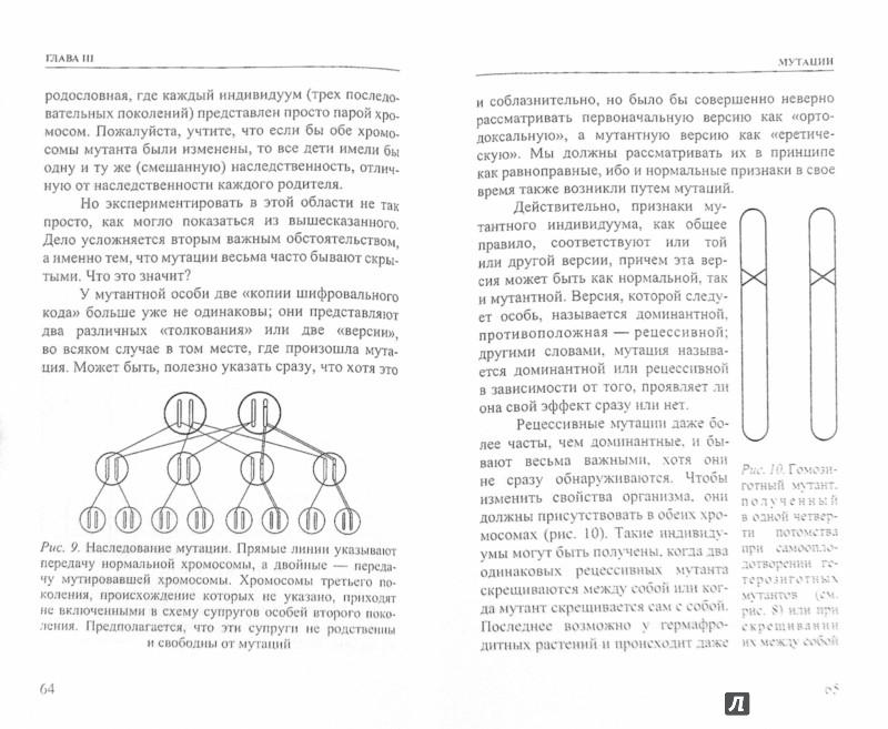 Иллюстрация 1 из 8 для Что такое жизнь с точки зрения физики? - Эрвин Шредингер   Лабиринт - книги. Источник: Лабиринт