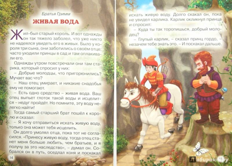 Иллюстрация 1 из 11 для Король-Лягушонок | Лабиринт - книги. Источник: Лабиринт