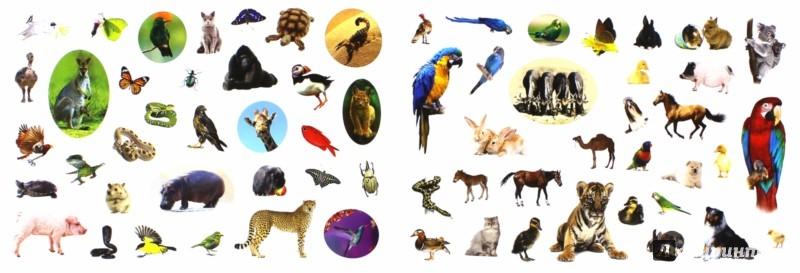 Иллюстрация 1 из 9 для 400 наклеек. Животный мир   Лабиринт - книги. Источник: Лабиринт
