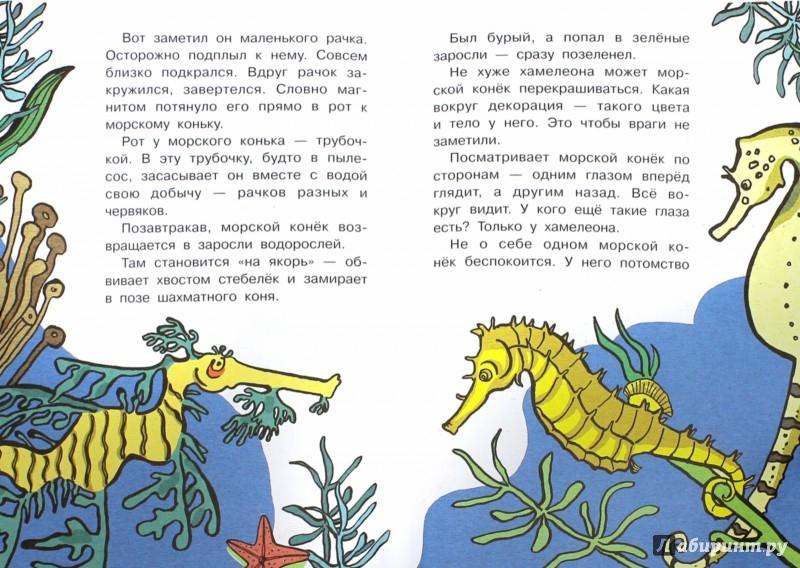 Иллюстрация 1 из 43 для Кто без крыльев летает? - Игорь Акимушкин   Лабиринт - книги. Источник: Лабиринт