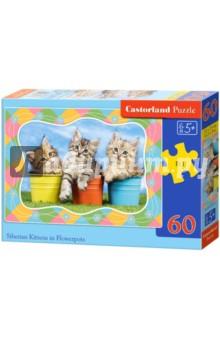 Puzzle-60 MIDI Три котенка (В-06762)Пазлы (54-90 элементов)<br>Пазл-мозаика.<br>Способствуют развитию образного и логического мышления, наблюдательности, мелкой моторики и координации движений руки.<br>Размер собранной картинки: 32х23 см<br>Количество элементов: 60<br>Материал: картон.<br>Упаковка: картонная коробка.<br>Правила игры: вскрыть упаковку и собрать игру по картинке.<br>Для детей от 5-ти лет.<br>Не давать детям до 3-х лет из-за наличия мелких деталей.<br>Сделано в Польше.<br>