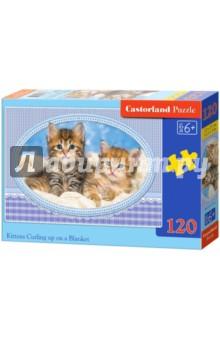 Puzzle-120 MIDI Котята на одеяле (В-13111)Пазлы (100-170 элементов)<br>Пазл-мозаика.<br>Способствуют развитию образного и логического мышления, наблюдательности, мелкой моторики и координации движений руки.<br>Размер собранной картинки: 32х23 см<br>Количество элементов: 120<br>Материал: картон.<br>Упаковка: картонная коробка.<br>Правила игры: вскрыть упаковку и собрать игру по картинке.<br>Для детей от 6-ти лет.<br>Не давать детям до 3-х лет из-за наличия мелких деталей.<br>Сделано в Польше.<br>