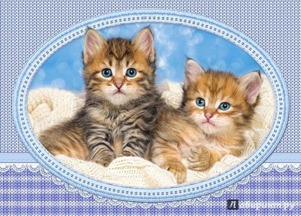 "Иллюстрация 1 из 2 для Puzzle-120 MIDI ""Котята на одеяле"" (В-13111) | Лабиринт - игрушки. Источник: Лабиринт"