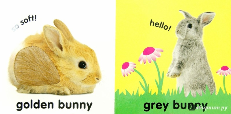 Иллюстрация 1 из 5 для Touch&Feel Bunny (Board Book) - Dawn Sirett | Лабиринт - книги. Источник: Лабиринт