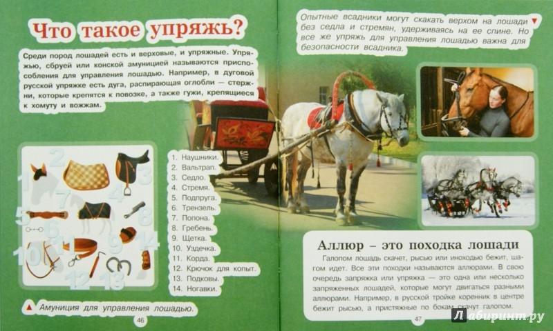 Иллюстрация 1 из 8 для Домашние животные - Анна Спектор | Лабиринт - книги. Источник: Лабиринт
