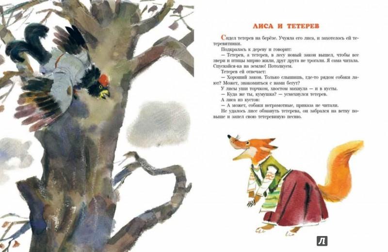 Иллюстрация 1 из 38 для Лиса и тетерев. Белорусские народные сказки | Лабиринт - книги. Источник: Лабиринт