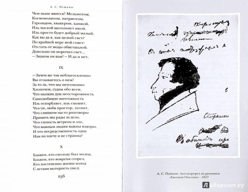 Иллюстрация 1 из 10 для Евгений Онегин - Александр Пушкин   Лабиринт - книги. Источник: Лабиринт