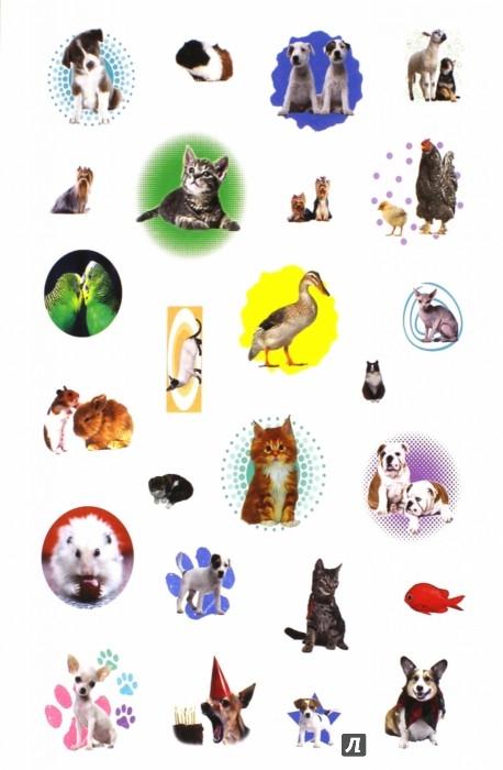 Иллюстрация 1 из 4 для Мои питомцы | Лабиринт - игрушки. Источник: Лабиринт