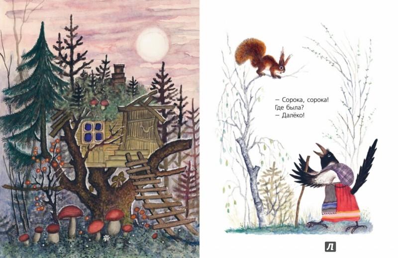 Иллюстрация 1 из 29 для Сорока-белобока   Лабиринт - книги. Источник: Лабиринт