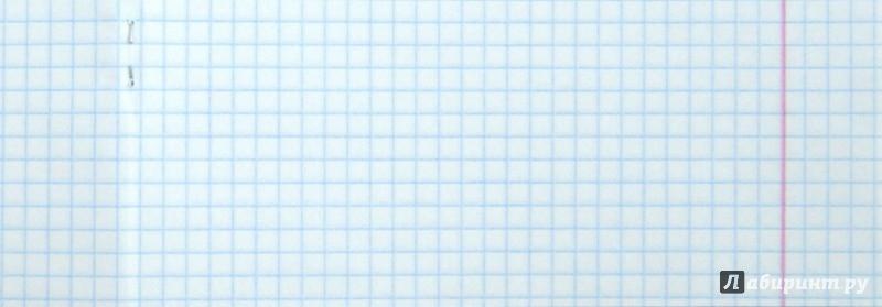 """Иллюстрация 1 из 7 для Тетрадь общая """"Orchid"""" (48 листов, клетка, в ассортименте) (811467-55)   Лабиринт - канцтовы. Источник: Лабиринт"""