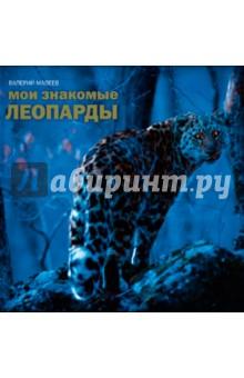 Мои знакомые леопардыФотоальбомы<br>О книге<br>Дальневосточный леопард - очень редкий, красивый и скрытный зверь. Его популяция стремительно сокращается - фактически леопарды остались только в одном месте России. И каждого из них биологи знают в лицо и по имени.<br><br>Автор этой книги, Валерий Малеев, много недель снимал леопардов из скрадка, расположенного в заповеднике Кедровая падь. Лучшие снимки представлены в этой книге.<br><br>Фишки<br>Редчайшие кадры.<br><br>Многие снимки удостоены наград на фотоконкурсах дикой природы<br><br>Для кого эта книга<br>Для всех, кто любит все живое (и особенно диких кошек).<br><br>Для тех, кому нравятся красивые книги.<br><br>Об авторе<br>Валерий Малеев - депутат Государственной думы, кандидат биологических наук, заядлый фотоохотник и путешественник, автор книг Живая природа России, Определитель птиц Иркутской области и других. Соавтор и главный редактор Красной книги Усть-Ордынского Бурятского автономного округа, губернатором которого он был с 1996 по 2007 год.<br>