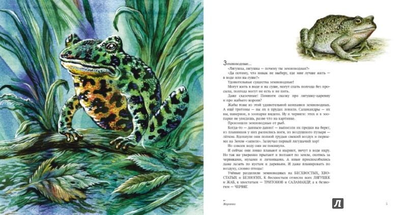 Иллюстрация 1 из 81 для Земноводные - Николай Сладков   Лабиринт - книги. Источник: Лабиринт