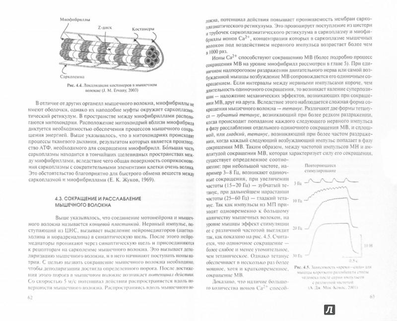Иллюстрация 1 из 4 для Гипертрофия скелетных мышц человека. Учебное пособие - Алла Самсонова | Лабиринт - книги. Источник: Лабиринт