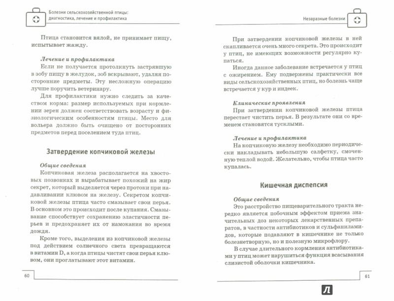 Иллюстрация 1 из 15 для Болезни сельскохозяйственной птицы: диагностика, лечение и профилактика - Л. Моисеенко | Лабиринт - книги. Источник: Лабиринт