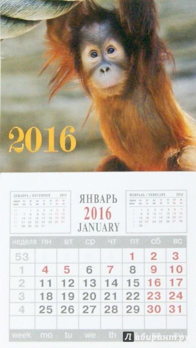 Иллюстрация 1 из 5 для Календарь на 2016 год. СИМВОЛ ГОДА 1 (на магните) (39575-24) | Лабиринт - сувениры. Источник: Лабиринт