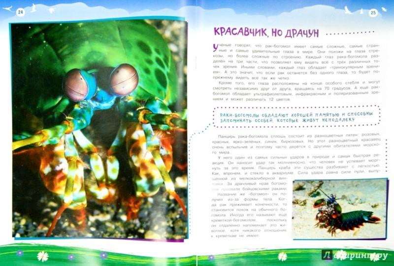 Иллюстрация 1 из 5 для Животные, которые нас удивили - В. Майоров | Лабиринт - книги. Источник: Лабиринт