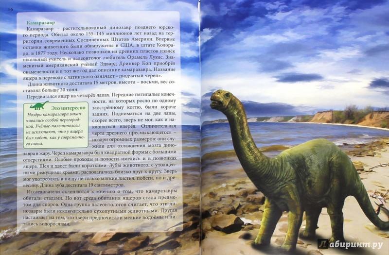 Иллюстрация 1 из 8 для Динозавры - Ирина Астапенко | Лабиринт - книги. Источник: Лабиринт