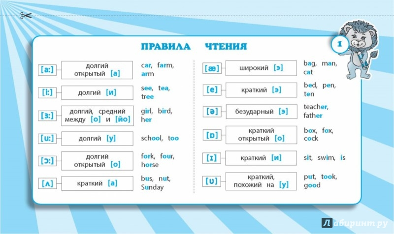 Программа Запоминания Английских Слов