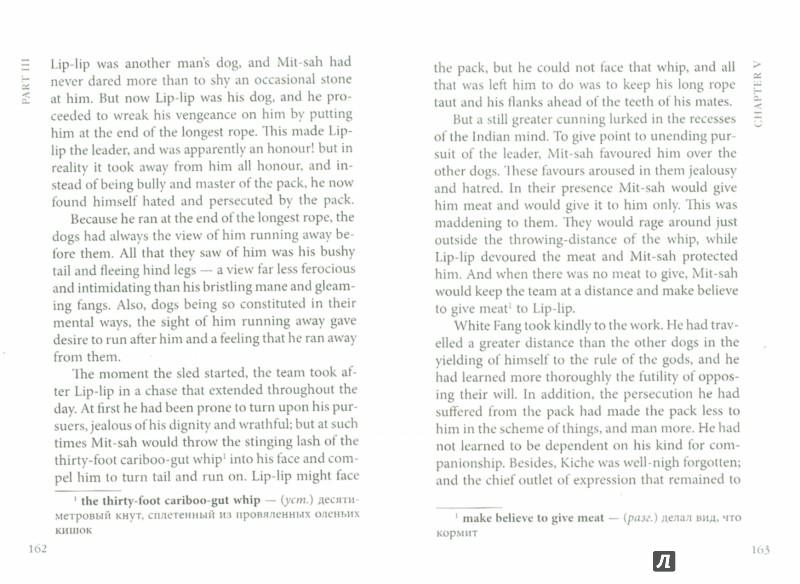 Иллюстрация 1 из 7 для White Fang - Jack London   Лабиринт - книги. Источник: Лабиринт