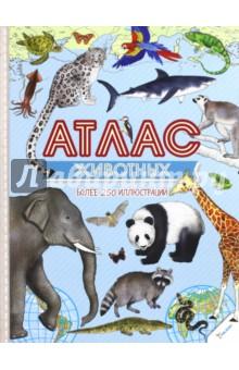 Атлас животныхЖивотный и растительный мир<br>Ах, как же богат и прекрасен животный мир! В Европе и Африке, Азии и Австралии, Северной и Южной Америке, а также Арктике и Антарктике обитает столько уникальных зверушек, что глаза разбегаются! Наземные, летающие и водные животные, они порадуют вас своим многообразием и уникальными свойствами, которые мы подробно описали! А еще нарисовали акварелью более 250 видов животных, чтобы вы любовались ими, рассмотрели во всех деталях и полюбили чарующий мир фауны! А в качестве бонуса для маленьких интеллектуалов мы разместили множество карт, климатических сведений и информацию о континентах. Приятного изучения и путешествия в разные уголки мира!<br>