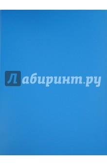 Папка с файлами (20 файлов, синяя) (CY1422-В)