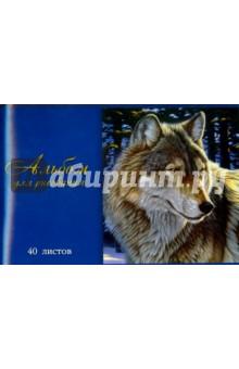 """Альбом для рисования """"ВОЛК"""", 40 листов (40676-5) Феникс+"""