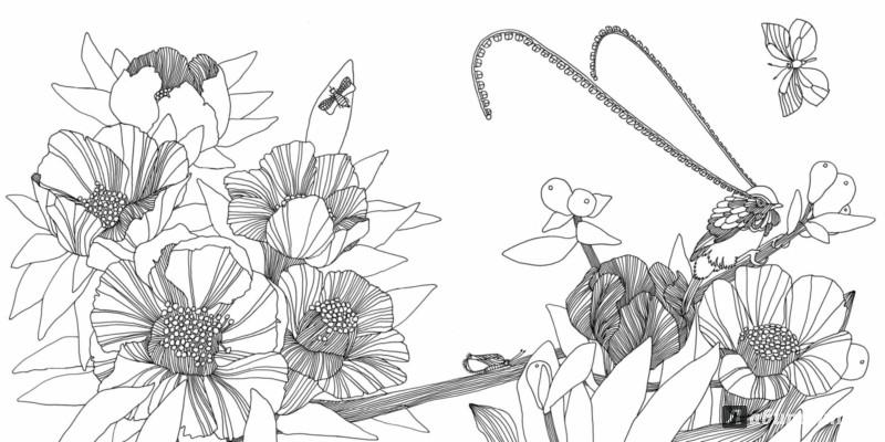 Раскраска сад цветов