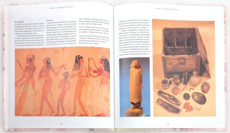 Иллюстрация 1 из 24 для Культура Древнего Египта | Лабиринт - книги. Источник: Лабиринт