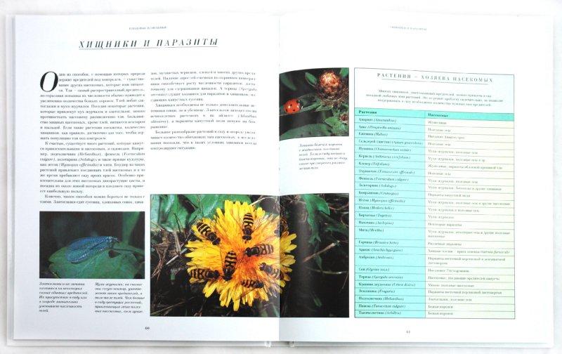 Иллюстрация 1 из 7 для книги растения
