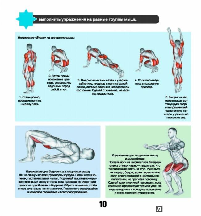 Комплекс упражнений на все группы мышц в домашних условиях
