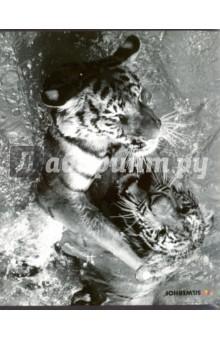 "������� ����� ""Animals In Motion "" (80 ������, � ������������) (811444-75) Silwerhof"
