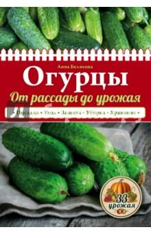 Белякова Анна Владимировна Огурцы. От рассады до урожая