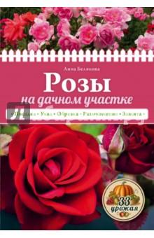 Белякова Анна Владимировна Розы на дачном участке