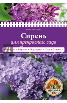 Белякова Анна Владимировна Сирень для прекрасного сада