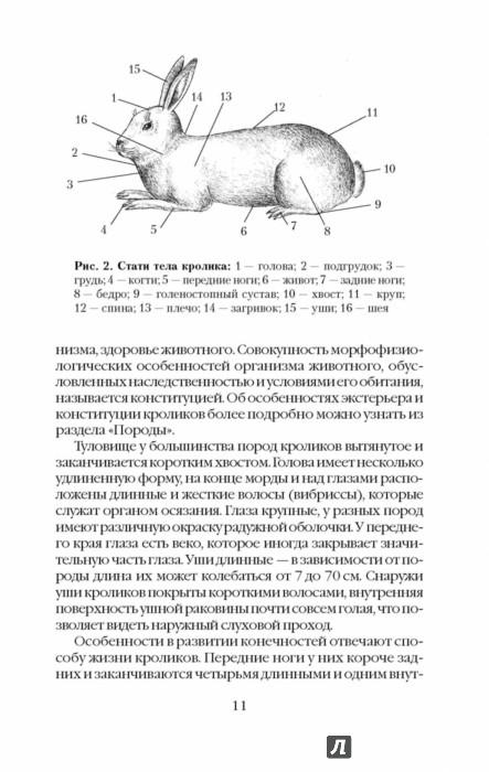 Александр снегов самый полный справочник кроликовода