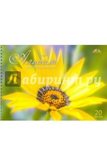 """Альбом для рисования """"Солнечный цветок"""" (20 листов, гребень) (С0224-40) АппликА"""