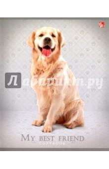"""Тетрадь 48 листов """"Верные друзья (собаки)"""", 5 видов (ТКЛ484970) Эксмо-Канц"""