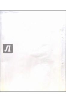 Файл с перфорацией А5 100 штук (SV-105)