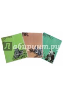 """Обложки для тетрадей с рисунком """"Животные"""" (3 штуки) (40601) Феникс+"""