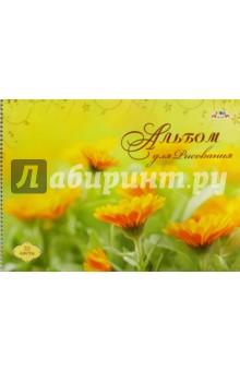 Альбом для рисования. Цветы. 32 листа (С0680-30) АппликА