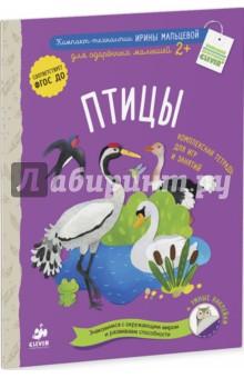 Птицы. Комплексная тетрадь для игр и занятий