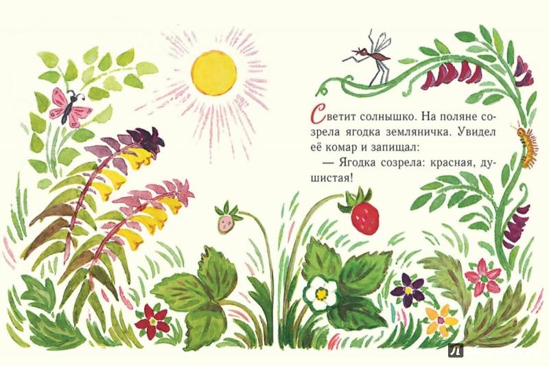 Иллюстрация 1 из 38 для Земляничка - Нина Павлова | Лабиринт - книги. Источник: Лабиринт