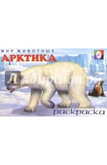 Мир животных: Арктика (раскраска)