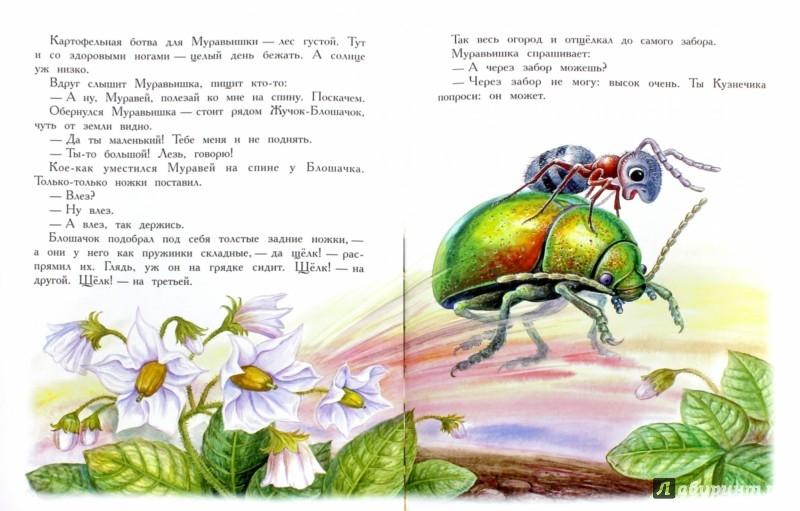 Рисунки детей к рассказу бианки кто чем поет