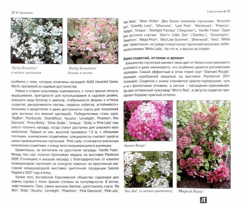 Сорта цветов для сибири описание